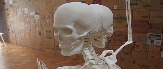 成安造形大学 卒業制作展・進級制作展 2013 『成安満開』に展示されていた、阿修羅像の骨格造型が凄い