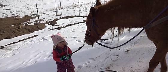 【動画】可愛い幼女と心優しい馬の交流が愛らしい。幼女に手綱を引かれても、ゆっくりとペースを合わせながら歩いてくれる馬の映像。