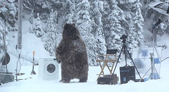 bear-does-laundry3