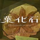 【動画】様々な記憶が堆積した地層や化石をテーマに、2人の少年を描いたひと夏の心温まるファンタジーアニメーション。昔懐かしい夏休みを思い起こさせる映像作品『木の葉化石の夏』が素敵!