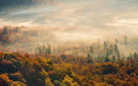 深まる秋にぴったりな、色鮮やかな紅葉の美しいデスクトップ壁紙素材『 29 Autumn Wallpapers For Your Desktop 』2