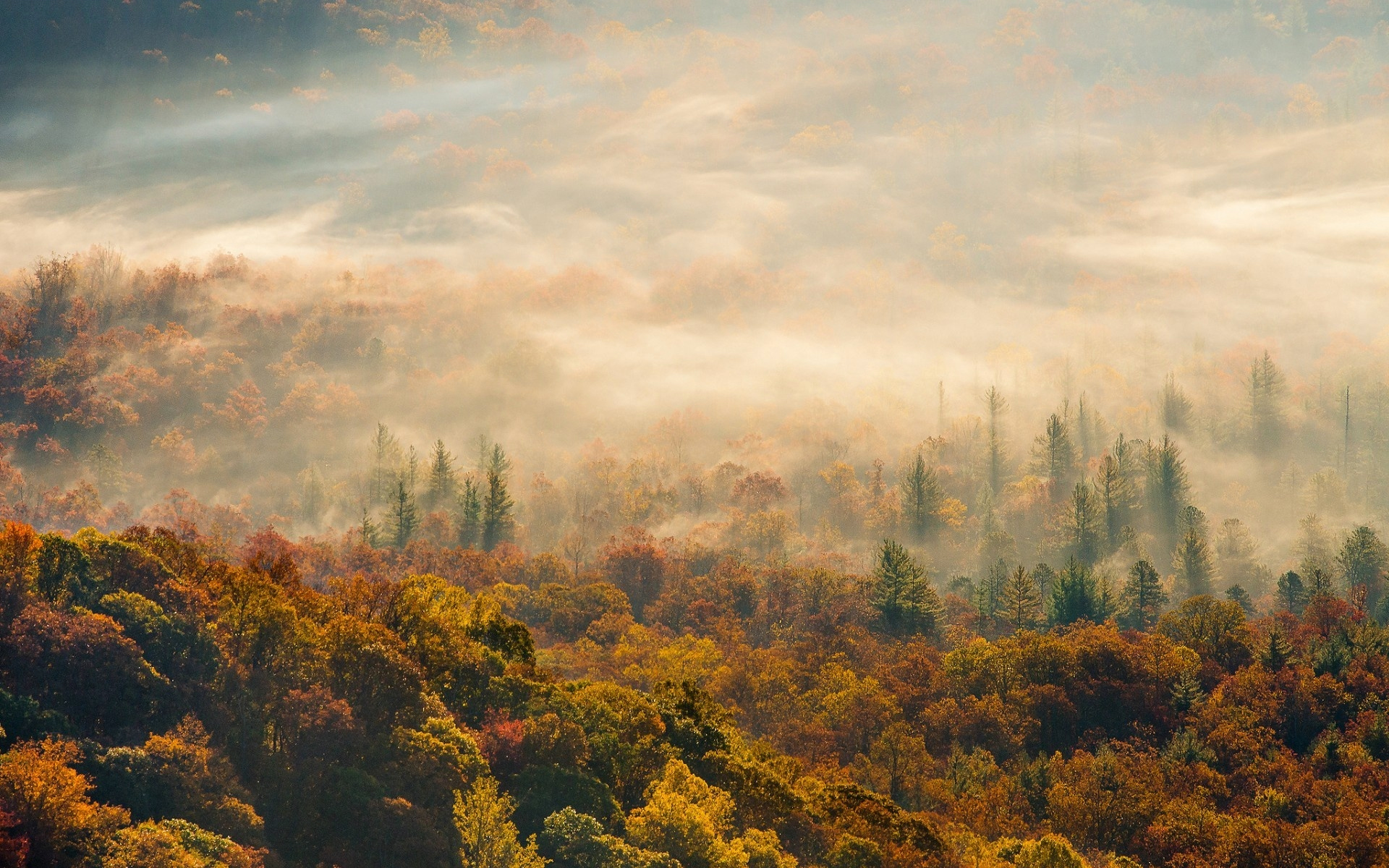 素材 深まる秋にぴったりな 色鮮やかな紅葉の美しいデスクトップ壁紙素材 29 Autumn Wallpapers For Your Desktop Happy Word
