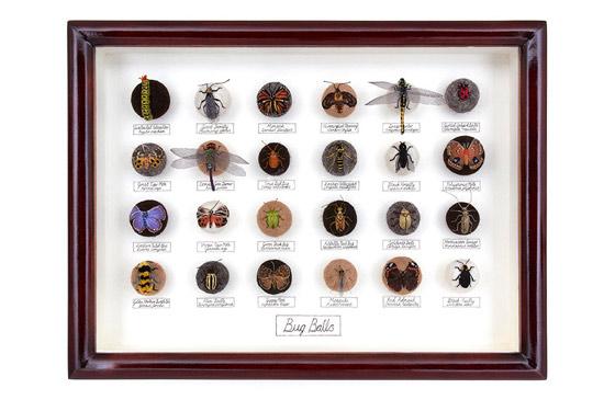 繊細な手作業の光るフェルトや刺繍でできた昆虫標本たち5