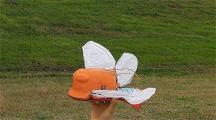天空の城ラピュタにも出てきたオーニソプター『フラップター』の、空飛ぶラジコンモデル映像1