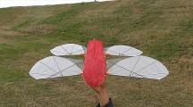 天空の城ラピュタにも出てきたオーニソプター『フラップター』の、空飛ぶラジコンモデル映像2