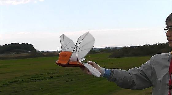 天空の城ラピュタにも出てきたオーニソプター『フラップター』の、空飛ぶラジコンモデル映像3