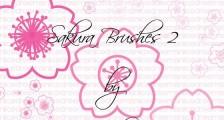 桜の花や花びらを表現したPhotoshopブラシ素材『25 Delicate-Looking Cherry Blossom Brushes』10