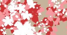 桜の花や花びらを表現したPhotoshopブラシ素材『25 Delicate-Looking Cherry Blossom Brushes』2