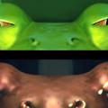 【動画】デスバレーの動く石の正体はこれだった?!3DCGアニメーションで描くデスバレーの動く石の謎『 Sailing Stones 』