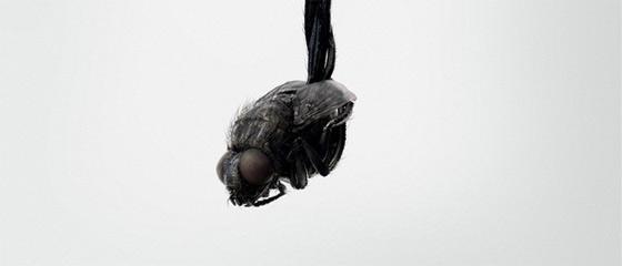 【閲覧注意】このイヤフォンなら虫のイヤ~な羽音は気にならない!? というクリエイティブなポスター広告