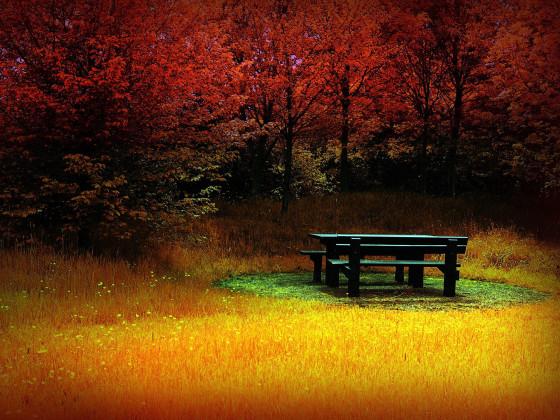 彩りも鮮やかな秋の紅葉をテーマにした壁紙素材が配布されています『 14 Colorful Autumn Wallpapers 』5