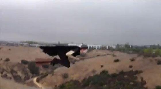 先日話題になっていた空飛ぶ魔法使いのGIF動画のタネ明かし3
