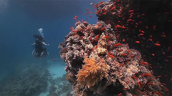 車椅子に乗ったまま海中を軽やかに飛行する幻想的な映像作品『 Freewheeling - Creating the Spectacle! 』2