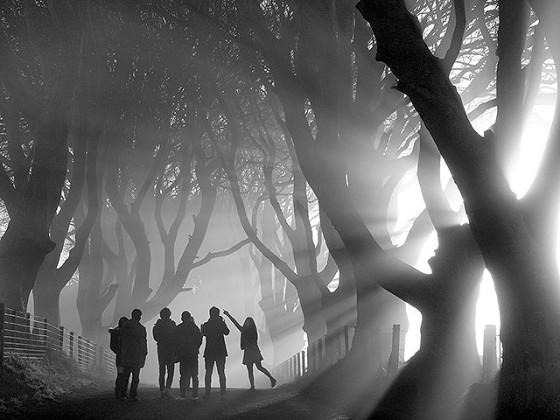 心洗われるほど美しい。風景写真家が腕を競うコンテスト『 Landscape Photographer of the Year 2013 』の入賞作品が素晴らしい。10