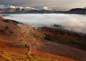 心洗われるほど美しい。風景写真家が腕を競うコンテスト『 Landscape Photographer of the Year 2013 』の入賞作品が素晴らしい。9