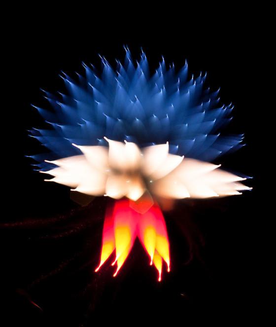 長時間露光とリフォーカスという技法で撮影した花火の画像が美しい1