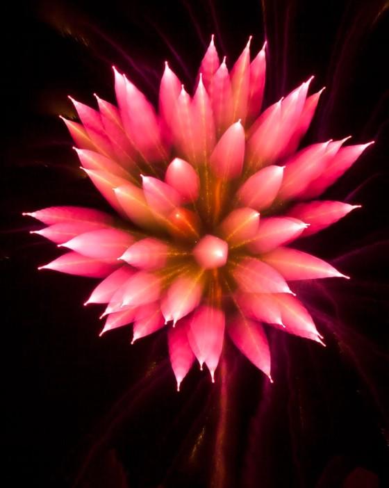 長時間露光とリフォーカスという技法で撮影した花火の画像が美しい2
