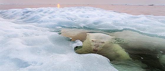 息を飲む美しさ。『ナショナルジオグラフィック・フォトコンテスト 2013』 グランプリを含む、13枚の入賞作品画像