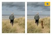 犬のいる風景と犬のいない風景を巧みに対比したペディグリーのシンプルなポスター広告2