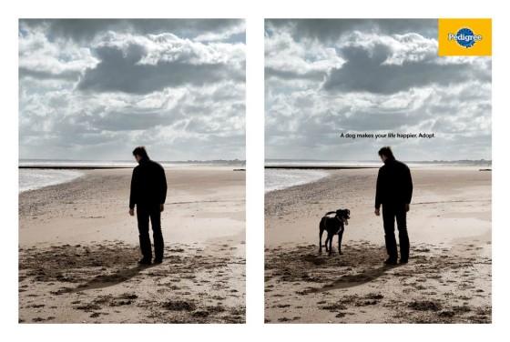 犬のいる風景と犬のいない風景を巧みに対比したペディグリーのシンプルなポスター広告3