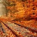【素材】列車の線路をクローズアップした、とても綺麗な壁紙素材が配布中です