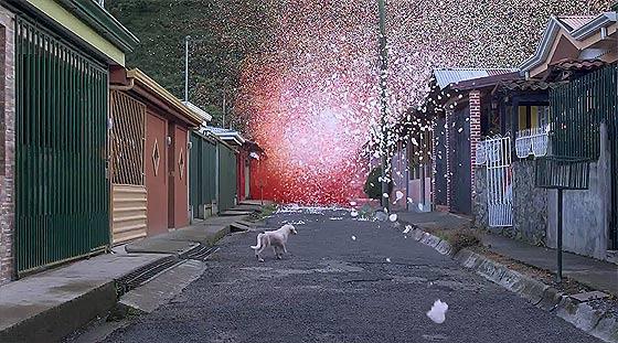 火山の噴火と共に大量の花びらが降り注ぐ、SONYの新しい4K Ultra HDテレビの美しいCM動画『 Sony 4K - Four times the detail 』4