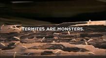 防虫や害虫駆除を行うTerminixによる、害虫の恐ろしさを存分に伝えるCM3