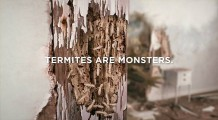 防虫や害虫駆除を行うTerminixによる、害虫の恐ろしさを存分に伝えるCM8