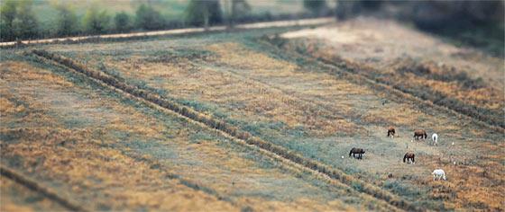 全てがミニチュアサイズに見えて、とても可愛い!ポルトガルののどかな風景をチルトシフトで撮影した映像『 The Village 』1