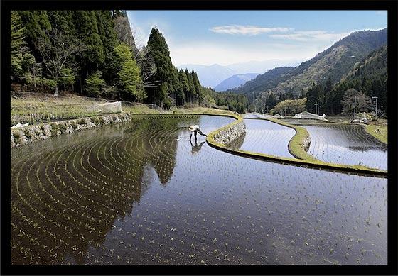心洗われる懐かしい情景を切り取った、日本の美しい風景写真6