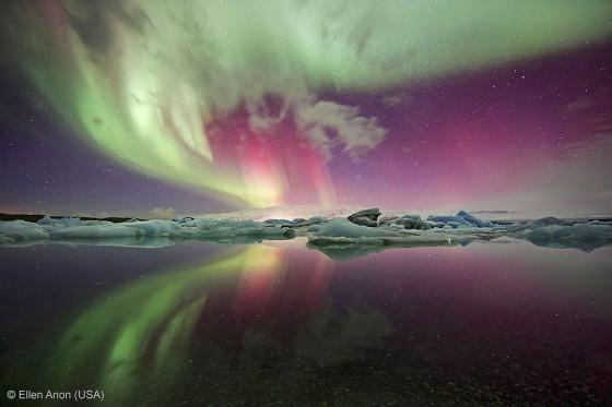 自然の中に暮らす動物の一瞬を切り取った鮮烈な写真の数々。野生動物写真家が競うコンペ『 Wildlife Photographer of the Year 』の受賞作品が素晴らしい21